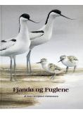 Fjandø og Fuglene